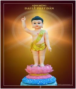 Mơ Một Mùa Phật Đản